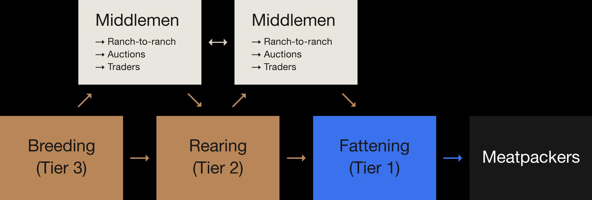 Flow-Example4